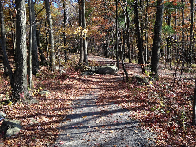 Lake Wallenpaupack, Poconos Mountains, Trails, Leaves, Heart Rock, Inside Hart